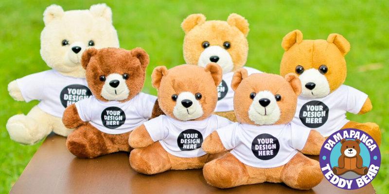 Teddy Bear with Customized T-Shirt